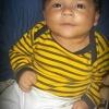 carlos Modlar Profile