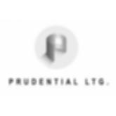Prudential Lighting Modlar Brand