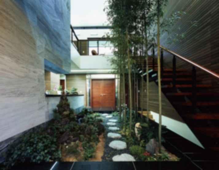 Creating the Ideal Indoor Garden
