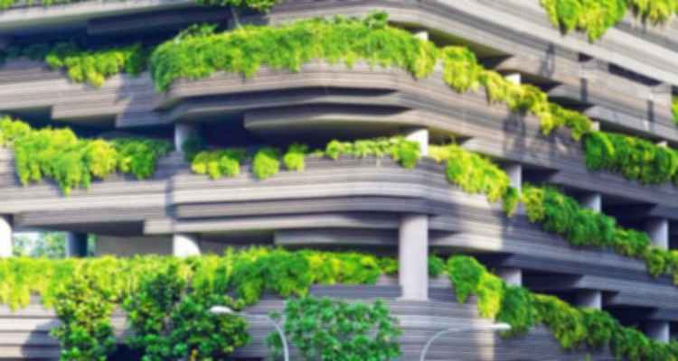 Ecocentric Design in an Anthropocentric World