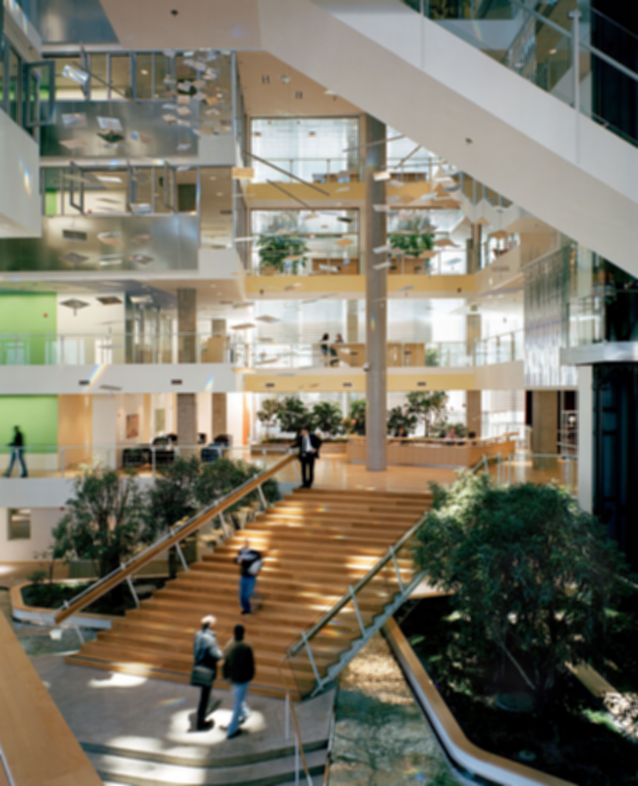 Modernism and Its Embracing of Biophilic Design
