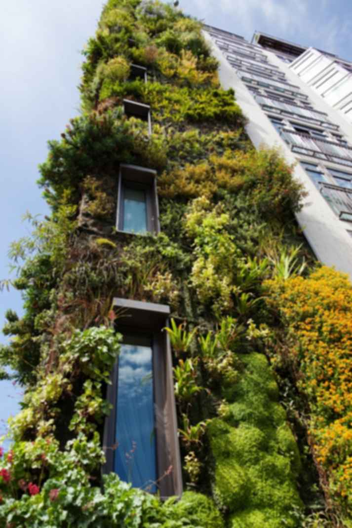 Environmentally Friendly Design Considerations for Your Next Architectural Project