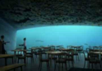 Under - Interior