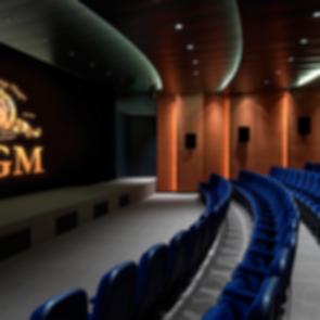 Metro Goldwyn Mayer Office - Screening Room