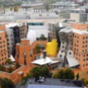 Ray and Maria Stata Center - Bird's Eye View
