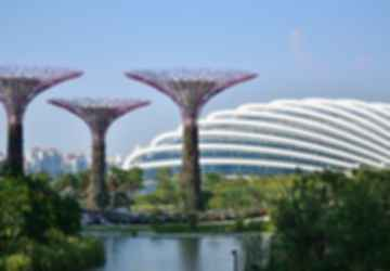 Gardens By The Bay - Supertrees and Flower Dome