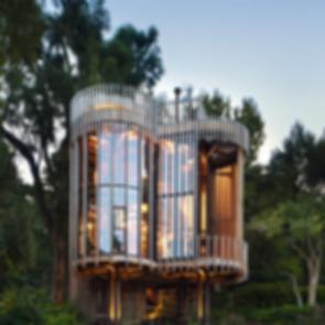 Tree House Constantia