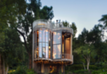 Tree House Constantia