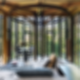 Tree House Constantia - Interior