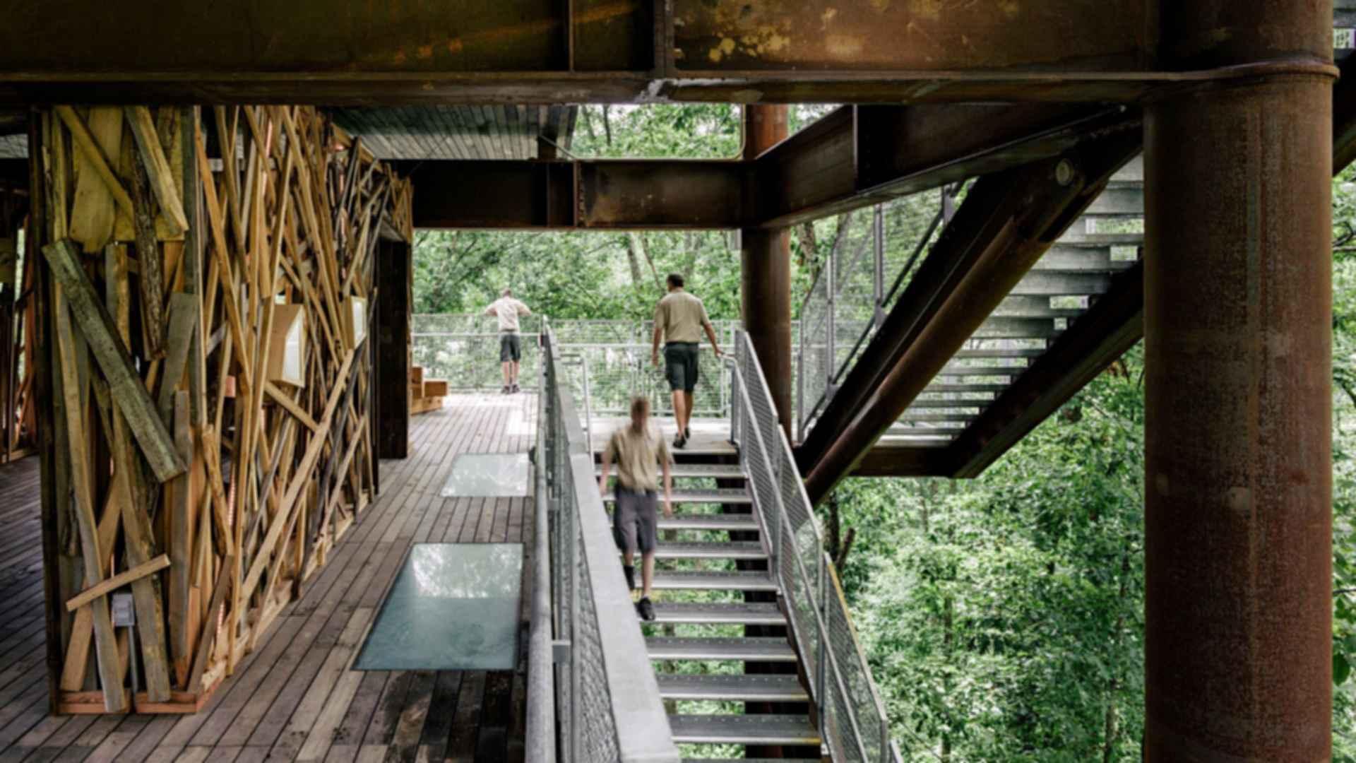 Sustainability Treehouse - Platform