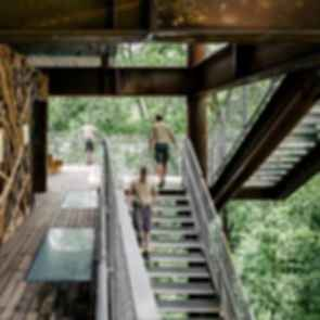 Sustainability Treehouse - Platform