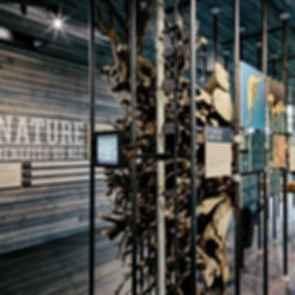 Sustainability Treehouse - Interior