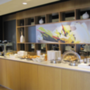 Lufthansa Logan Airport Lounge - Buffet Area