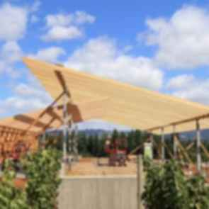 L'Angolo Estate Winery - Construction