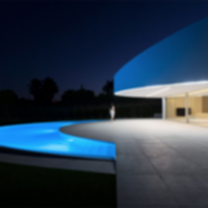 Balint House - Exterior