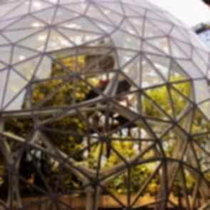 Amazon Spheres - Façade