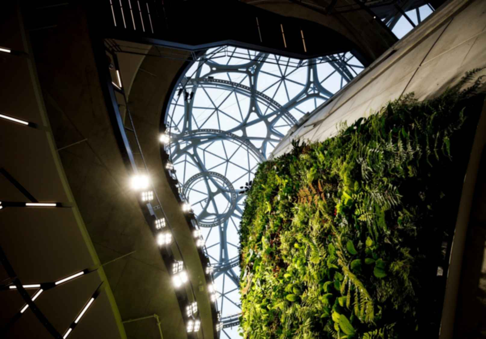 Amazon Spheres - Interior