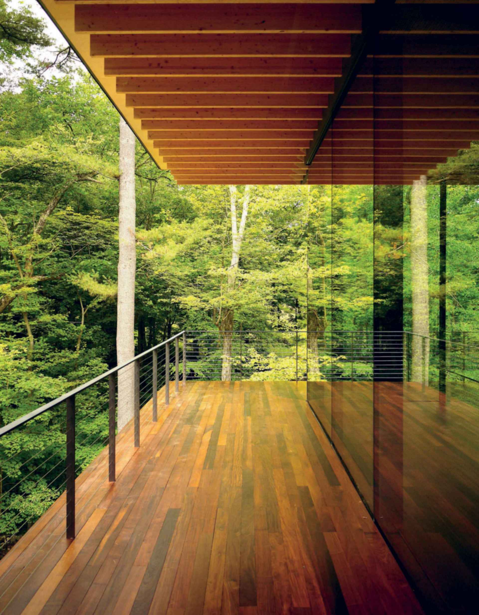 Glass/Wood House - Exterior Decking
