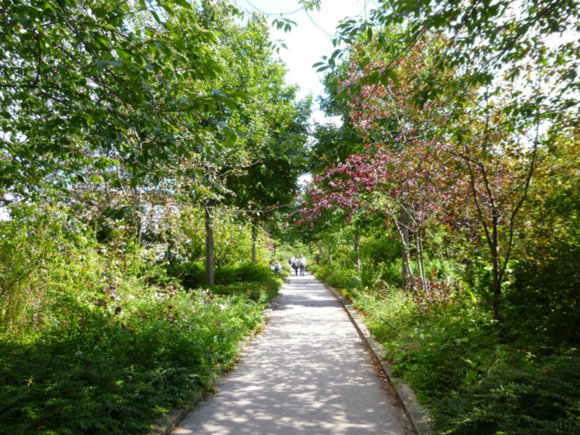 La Coulee Verte - Walkway