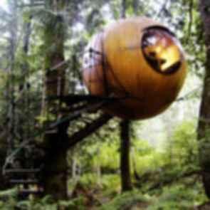 Free Spirit Spheres - Exterior