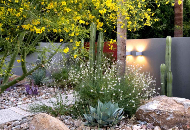 New Century Garden - Plants