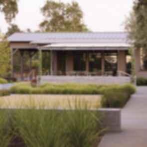 Medlock Ames Tasting Room - Walkway/Plants