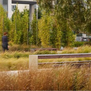 Smith Cardiovascular Research Building Landscape - Benches/Plants