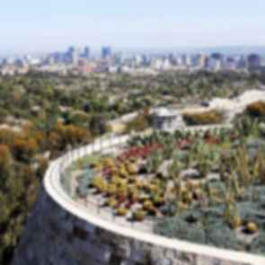 Getty Museum Cactus Garden - Landscape
