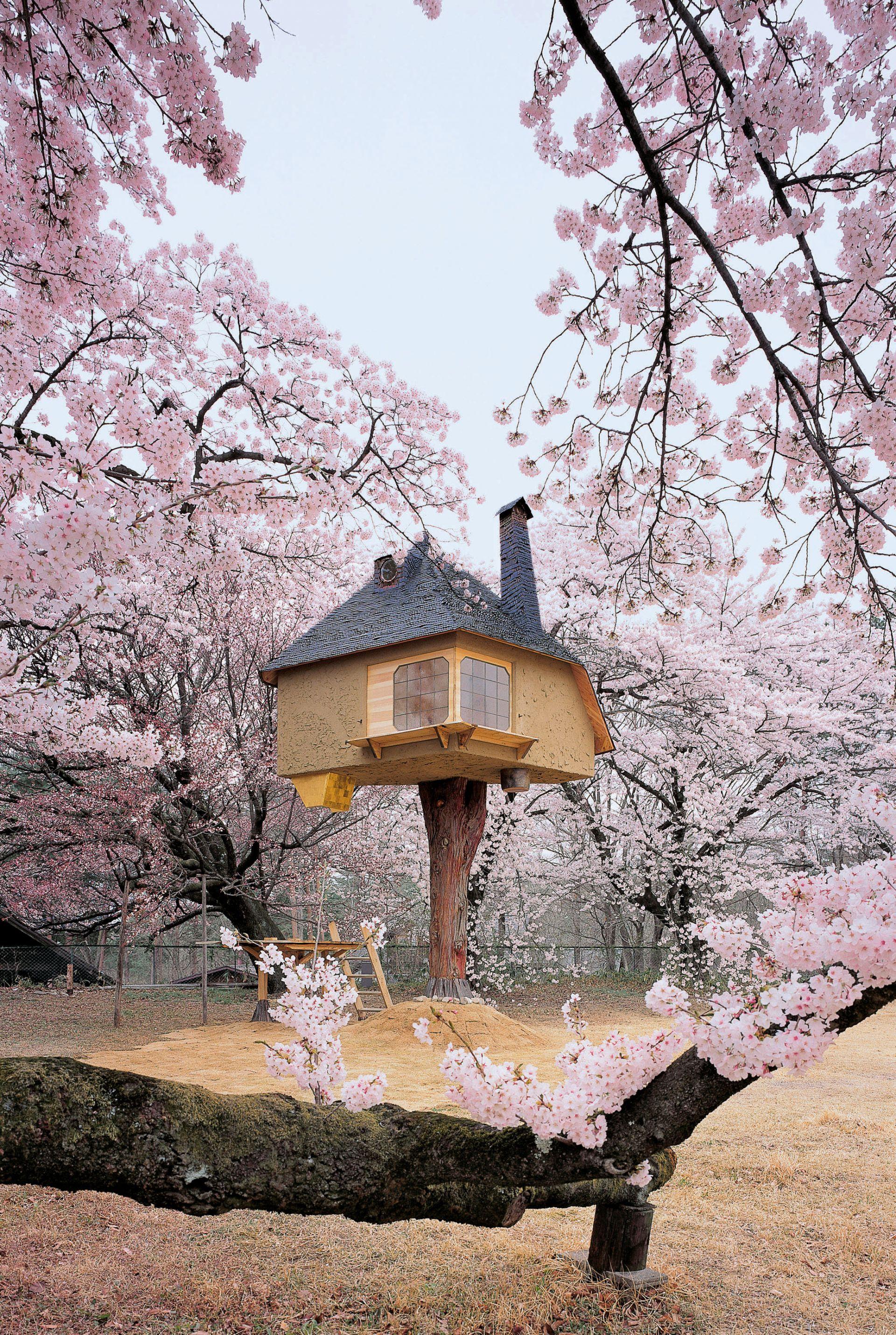 Hasil gambar untuk Teahouse Tetsu