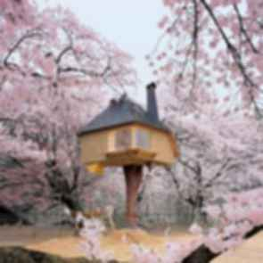 Teahouse Tetsu - Exterior