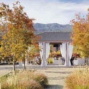 Vineyard Retreat - Outdoor Area