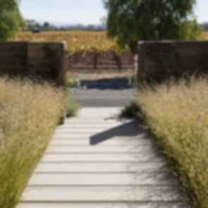 Vineyard Retreat - Walkway