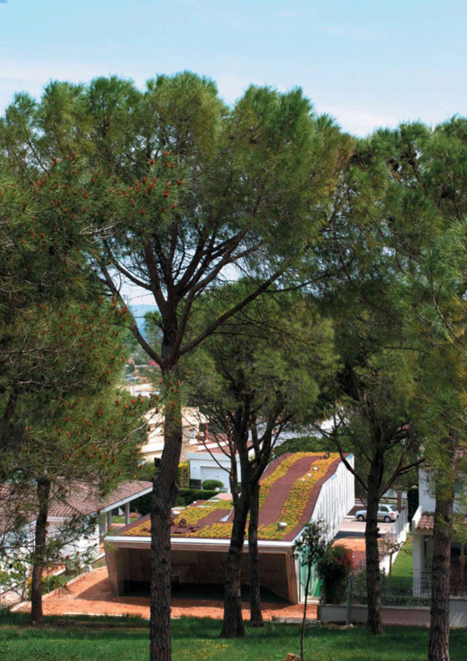 Villa Bio - Exterior/Landscape