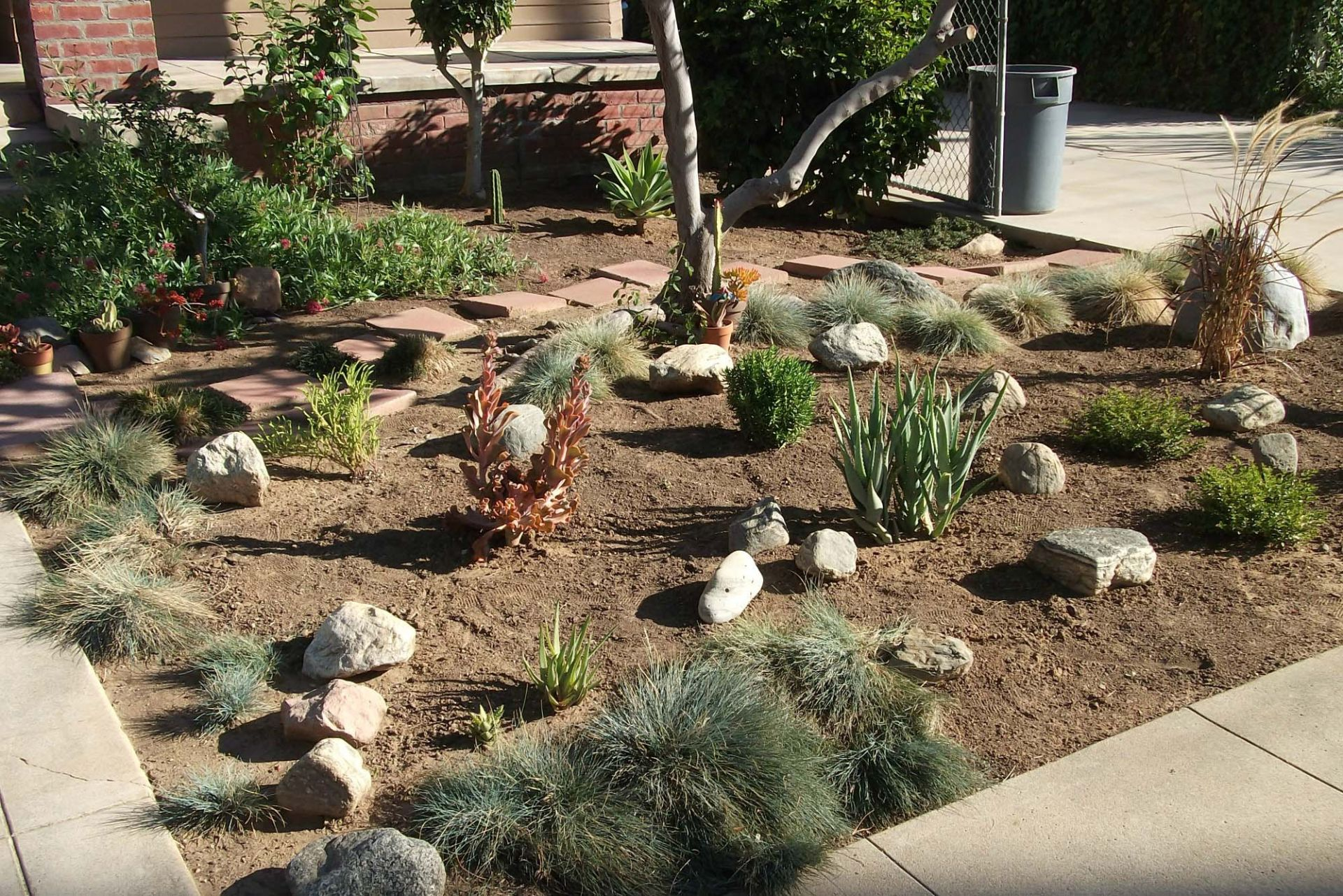 Drought Tolerant Landscaping Ideas Front Yard Small