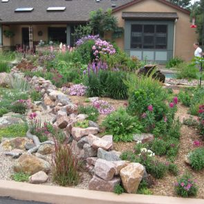 Front Yard - Rocky : drought-landscaping-ideas - designwebi.com