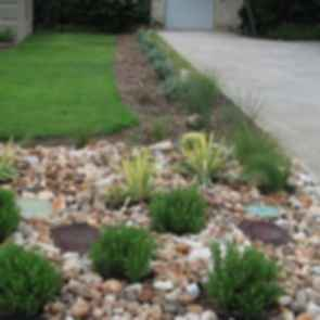 Front Yard - Grass and Rocks