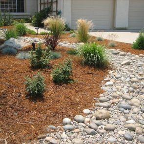 Drought Tolerant Landscaping Ideas - modlar.com