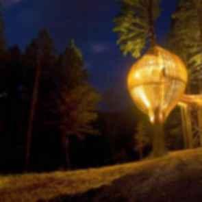 Yellow Treehouse - Exterior