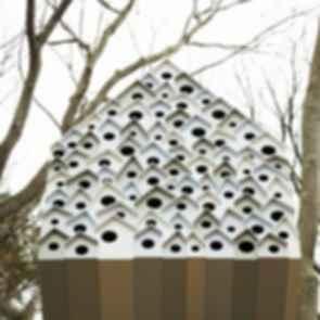 Bird's Apartment - Exterior