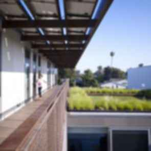 Ying Yang House - Green Roof