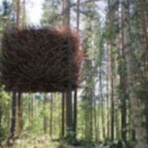 Bird's Nest - Exterior