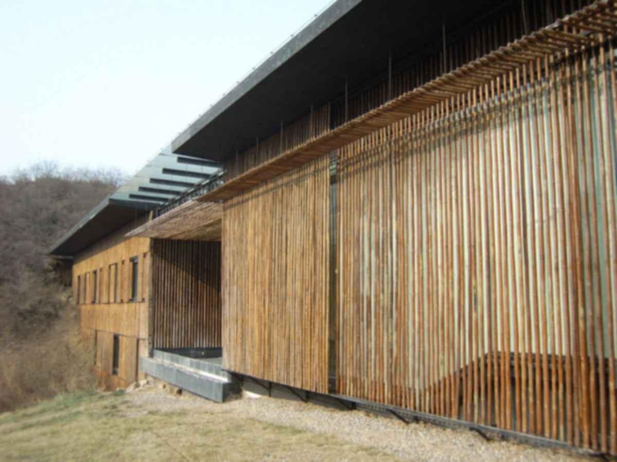 Great Bamboo Wall - Bamboo Walls