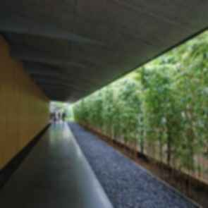 Great Bamboo Wall - Walkway