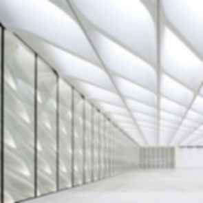 The Broad Museum - Interior Roof