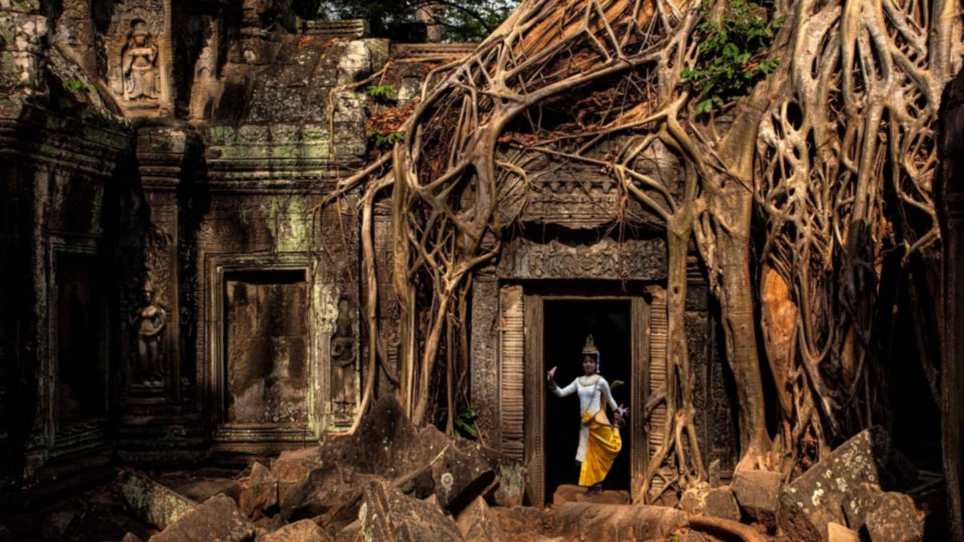 Ta Prohm Temple - Door