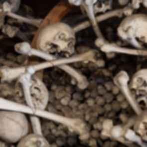 Czermna Chapel - Bones