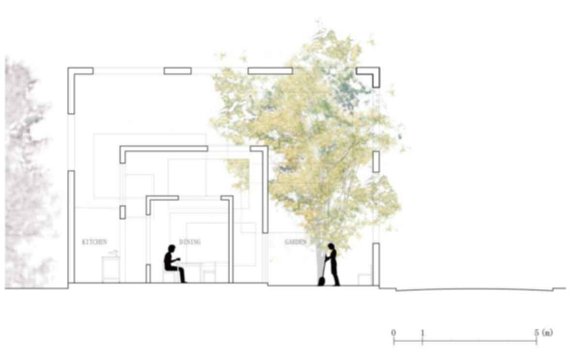House N - Concept Design