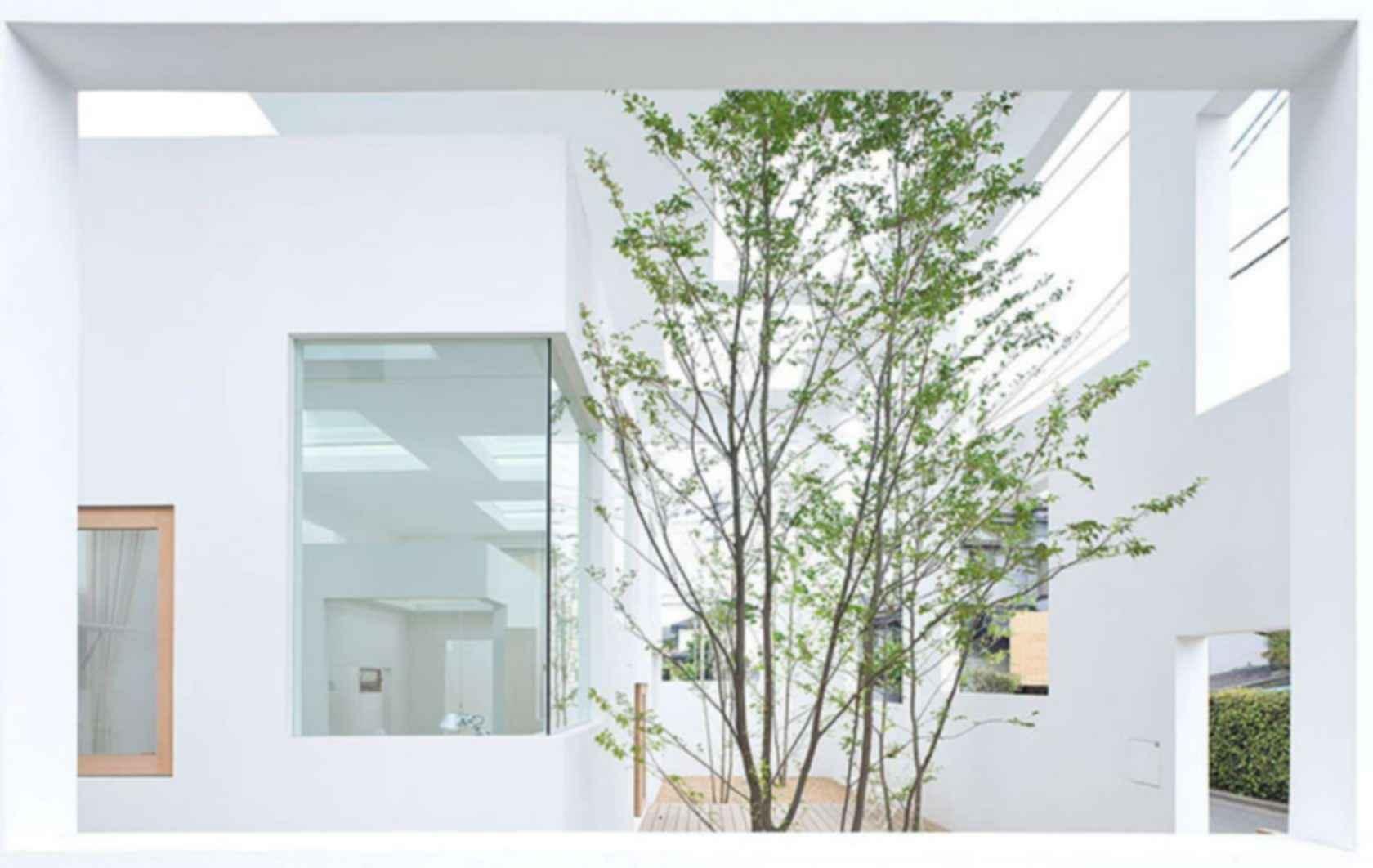 House N - Interior