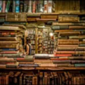 The Last Bookstore - Book Window