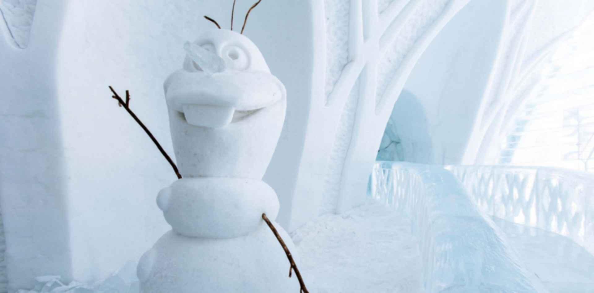 Hotel De Glace - Snow Detail